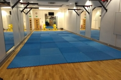 Loft Mat Space at BJJ School Belfast