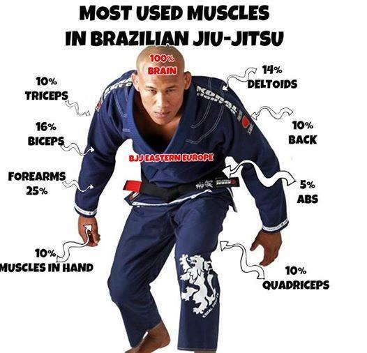 jiu-jitsu muscles